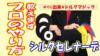 【簡単】【種明かし】シルクセレナーデ|難易度★☆☆☆☆|おすすめマジックグッズ